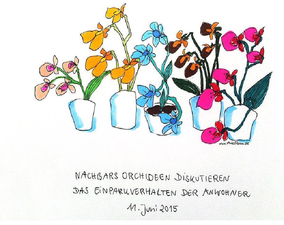 OWL 120615 Orchideen