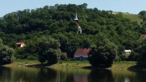 Zatoń Dolna .... national park for birds I can name in German only: Graureiher, Störche, Enten, Krähen, Kraniche, Amseln, Falken, Raben, Schwäne, ein Seeadler, Kormorane, Schwalben, Stare, &c
