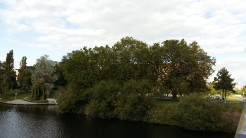 Bäume im Herbst1