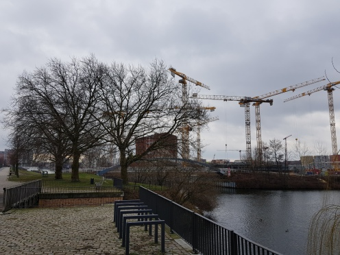 Trees and cranes